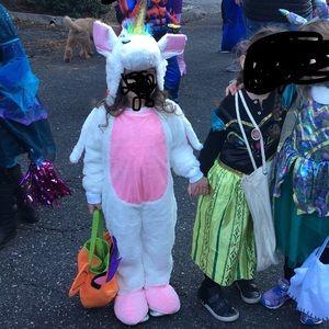 Excellent condition unicorn costume.